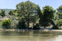 小盐水湖在希腊4 库存照片