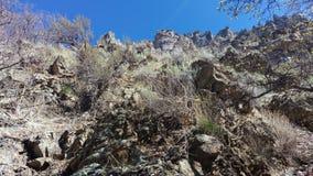 小石城峡谷崎岖的石峰 免版税库存图片