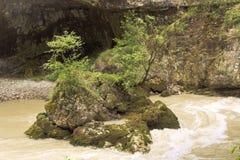 小石小岛在山小河的冲的水中 Chegem峡谷 免版税库存照片