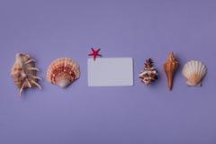 小礼品券组成与海洋事 免版税图库摄影