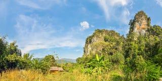 小竹小屋在泰国的密林 免版税图库摄影