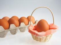 小篮子的鸡蛋 库存图片