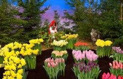 小红骑兜帽和狼在我喜爱的春天从事园艺 免版税库存图片