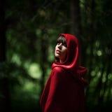小红骑兜帽在狂放的森林里 库存照片