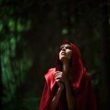 小红骑兜帽在狂放的森林里 免版税图库摄影