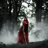 小红骑兜帽在狂放的森林里 免版税库存图片