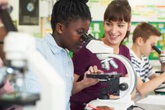 小组与使用显微镜的老师的学生在科学类 库存照片