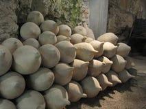 小组各种各样的古色古香的amphorae在博物馆 免版税库存照片