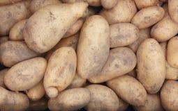 小组土豆在食物市场上卖了 库存图片