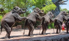 小组在徒步旅行队世界公园的大象2015年3月31日在曼谷,泰国 免版税库存照片