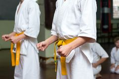 小组在武道训练的孩子 库存图片
