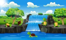 小组在瀑布场面的乌龟动画片