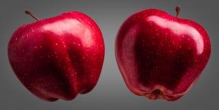 小组在灰色背景的美味红色苹果 库存图片