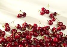 小组在白色背景的樱桃在晴朗的光 免版税库存图片