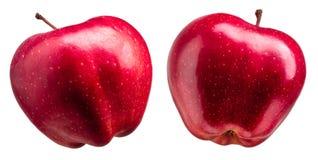 小组在白色背景的美味红色苹果 免版税图库摄影