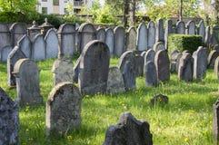 小组在绿草在阳光下, Hermanuv mestec的小犹太公墓的保存良好的犹太坟墓在捷克共和国 免版税库存照片