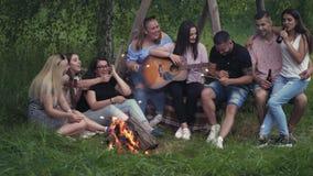 小组在营火附近的朋友 股票视频