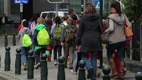 小组孩子组织的步行伴随成人博物馆参观 股票视频