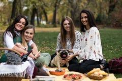 小组少妇有野餐在公园 库存照片