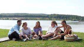 小组有一beagl的愉快的朋友在野餐 影视素材
