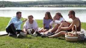 小组有一beagl的愉快的朋友在野餐 股票录像