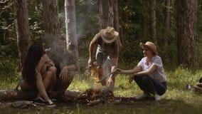 小组朋友野营 他们在阵营火附近坐 有的青年人野营 股票录像