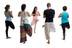 小组瑜伽被隔绝的训练射击 免版税库存照片