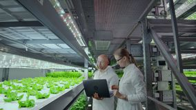 小组白色衣服的现代科学家生物工艺学科学家与工作的有机水耕的菜片剂 股票视频