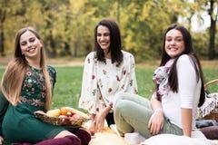 小组相当少妇有野餐在公园 库存图片