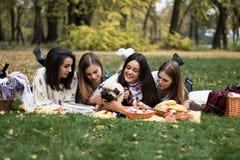 小组相当少妇有野餐在公园 免版税库存图片