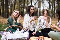 小组相当少妇有野餐在公园 免版税库存照片