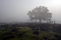 小组走一清早的大自然爱好者 免版税图库摄影