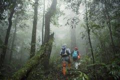 小组迁徙在雨林密林 冒险和探险家 免版税库存照片