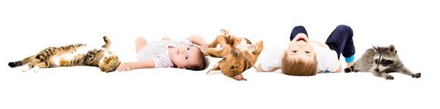 小组逗人喜爱的孩子和宠物 免版税库存图片