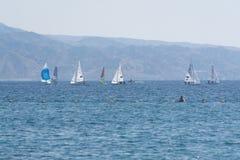 小组风帆冲浪者是红海在埃拉特,以色列附近 库存图片
