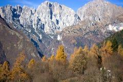 小组Schiara和Gusela del Vescova,白云岩,贝卢诺 免版税库存照片