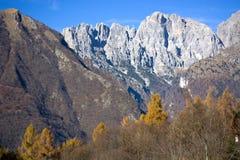 小组Schiara白云岩,贝卢诺,秋天天 免版税库存照片