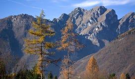 小组Schiara白云岩,贝卢诺 免版税库存照片