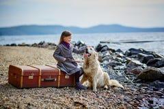 小美丽的女孩在与狗,猎犬的海滩走 免版税图库摄影