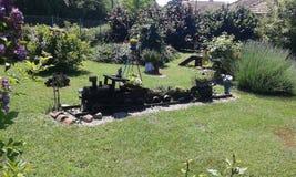 小美丽的庭院的树 库存照片