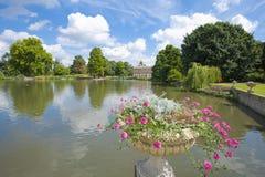 小美好的庭院湖的设置 免版税库存照片