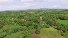 小自然地增长的农业社村庄丰富的树 影视素材