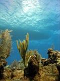小船下潜礁石 库存图片