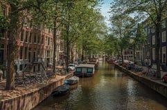 小船停泊了在沿途有树的运河、砖瓦房和晴朗的蓝天的边在阿姆斯特丹 免版税库存照片