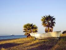 小船和两棵棕榈在Kos希腊海滩  免版税图库摄影