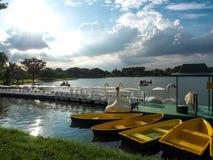 小船和天鹅在Rama乘坐9的湖在曼谷 图库摄影