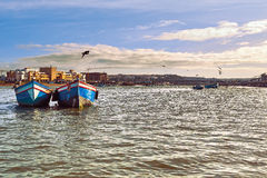 小船和海鸥在太平洋的海湾在Sali摩洛哥, 2015年3月镇  库存照片