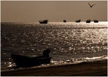 小船和鸟在海 图库摄影
