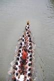 小船喀拉拉种族 库存照片