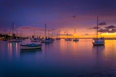 小船在日落的比斯坎湾,看从迈阿密海滩,佛罗里达 库存图片